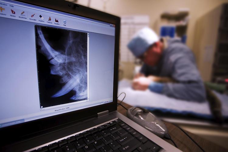Телехірург
